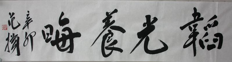 韬光养晦(2011年新作)